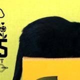 5月25日はホゴネコの日!ねこもぐらたたき大会に参加して保護猫支援